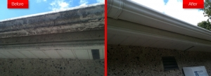 Gutters Before And After